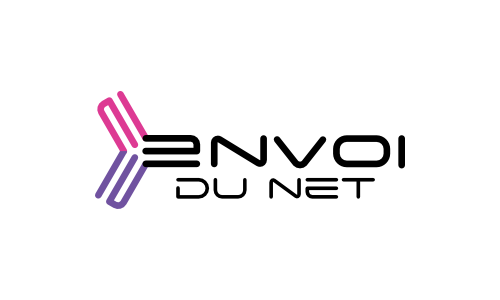 Logo Envoidunet 01