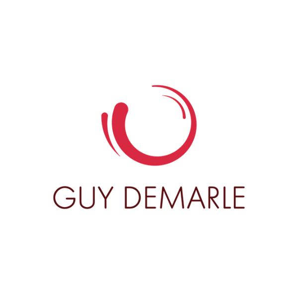 Logos Client Sellingathome Guydemarle 01